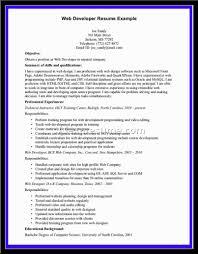 developer resume pdf