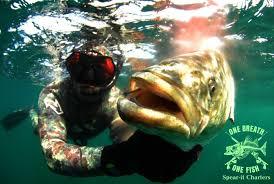 Rhode Island snorkeling images Spear it charters jpg