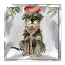 medici charity christmas cards med6895 pack of 8 cards dog in
