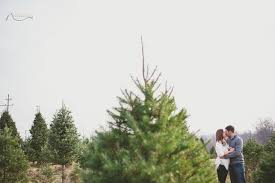christine anthony perfect christmas tree farm engagement new