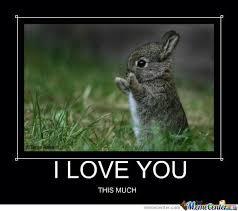 I Love You This Much Meme - i love you this much by jordanlazov meme center
