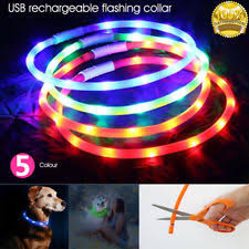 Light Up Dog Collar Led Flashing Dog Pet Collar Ebay