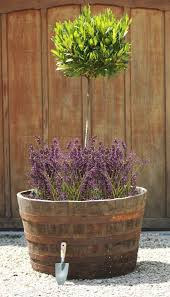 Half Barrel Planters by Extra Large Rustic Half Whiskey Barrel Oak Planter D90cm 29 99