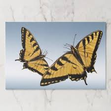 tiger swallowtail butterfliestearaway placemat individual