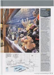 city aquarium custom aquariums aquarium design creating