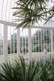 Bicton Park Botanical Gardens A Devonshire Adventure Part Two Bicton Park Botanical Gardens