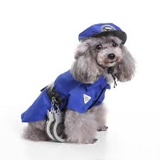 pets halloween costume u2013 your favorite outlet