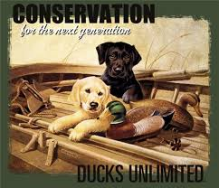 Ducks Unlimited Bedding For A Great New Waterfowl Hunting And Retriever Training Store