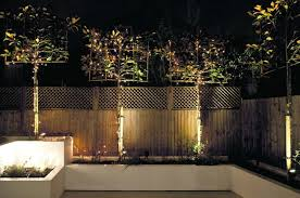 how to design garden lighting lighting designer paul nulty on how to make the most of a garden