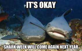 Shark Week Meme - shark week meme by boobidillydoop memedroid