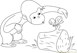 curious george catch butterfly coloring free curious george