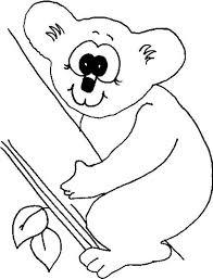 koala bear big eye coloring color luna