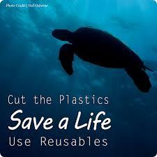 ocean plastic u2014 see turtles