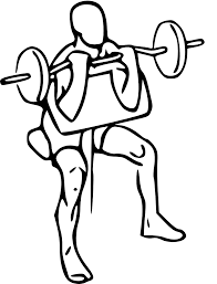 5 great exercises to bulk up your arms my gym blog