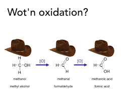 Wot Memes - wot in oxidation what in tarnation know your meme