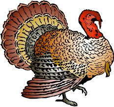 turkey free thanksgiving clipart clip pictures graphics