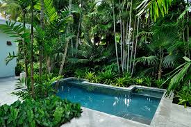 10 different and great garden project anyone can make 9 tropical