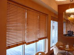 Blinds For Bow Windows Decorating Ideas Window Treatments For Casement Windows