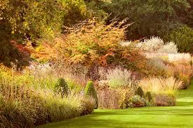 ph beel rhs garden harlow carr uk ornamental