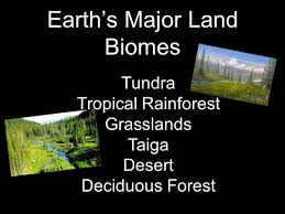 tundra native plants what are biomes biomes are regions of the world with similar
