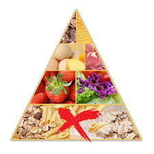 gastric bypass food pyramid obesity coverage