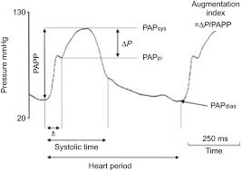vascular and right ventricular remodelling in chronic