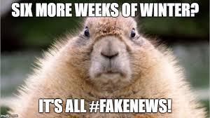 Groundhog Meme - groundhog day imgflip
