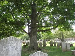 Princeton Cemetery Princeton Cemetery 150by70