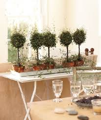 add some greenery decorate your home with plants tips and