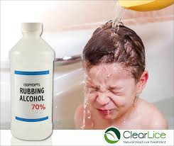Rubbing Alcohol Kills Bed Bugs Cl 04 25 Facebook Rubbing Alcohol 1 Jpg