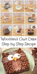 owl cake step by step recipe and easy cake decoration owl