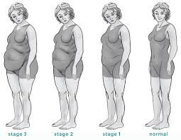 an explanation of adrenal body type by dr berg