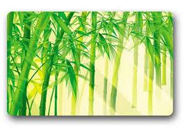 Bamboo Outdoor Rug Online Get Cheap Outdoor Bamboo Rug Aliexpress Com Alibaba Group