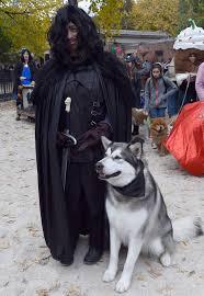 Halloween Costumes Husky Dog Halloween Costumes 2016 U0027game Thrones U0027 Costume Ideas Photos