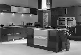Finish Kitchen Cabinets Home Design Ideas - Kitchen cabinets finish