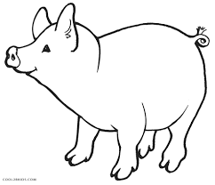 coloring coloring pages pigs free printable pig kids