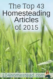 43 top homesteading articles of 2015