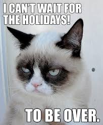 Grumpy Cat Memes Christmas - a very grumpy cat christmas meme roundup cus riot