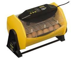 brinsea octagon 20 advance incubator appletons animal housing