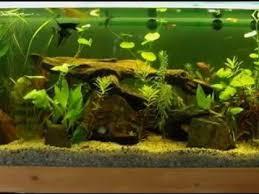 diy aquarium decor ideas