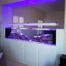 Aquarium Room Divider Dallas Aquarium Experts Aquarium Service Aquarium Leasing