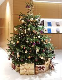 order office christmas trees online provincial planters