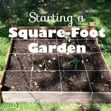 Squar Foot Starting A Square Foot Garden U2013 This Pug Life