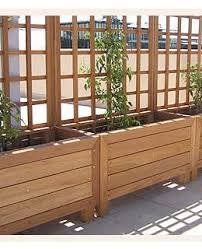 screening option a trellis could be added to the wooden planters