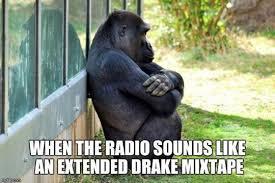 Funny Gorilla Memes - funny memes on the internet