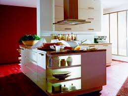 Buy Cheap Kitchen Cabinets Online Inexpensive Kitchen Cabinets Toronto Tehranway Decoration
