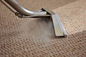 professional steam carpet and upholstery cleaning stain removal