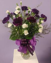 purple carnations moonshadow carnations