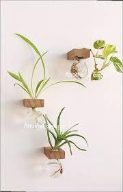 Hanging Glass Wall Vase Hanging Glass Wall Vases Home Design Ideas
