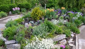 how to design a backyard how to design a rock garden exprimartdesign com